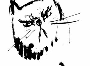 nahnevana mačka